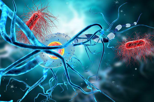 Можно ли полностью вылечить эпилепсию и что для этого необходимо?
