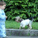 8 способов помочь ребенку при испуге