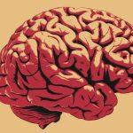 Постоянный шум в ушах является ранним признаком болезней мозга