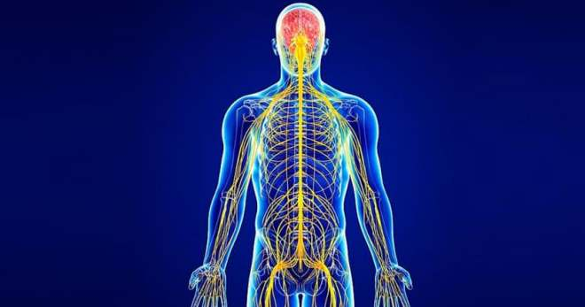 Защемление седалищного нерва