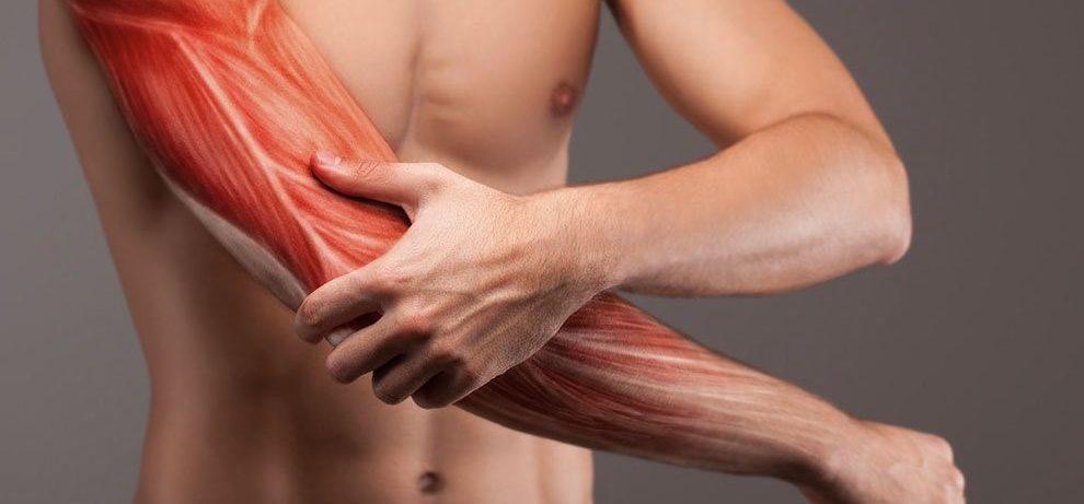 Атеросклероз. Описание, причины, диагностика