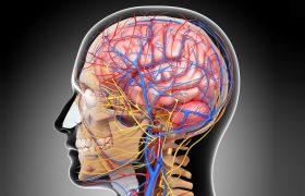 Сравнение вальпроата и леветирацетама в лечении идиопатической генерализованной эпилепсии