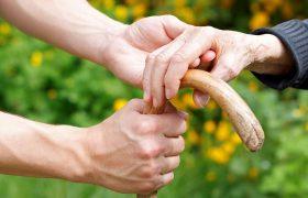 Ученые установили вероятные причины развития болезни Альцгеймера